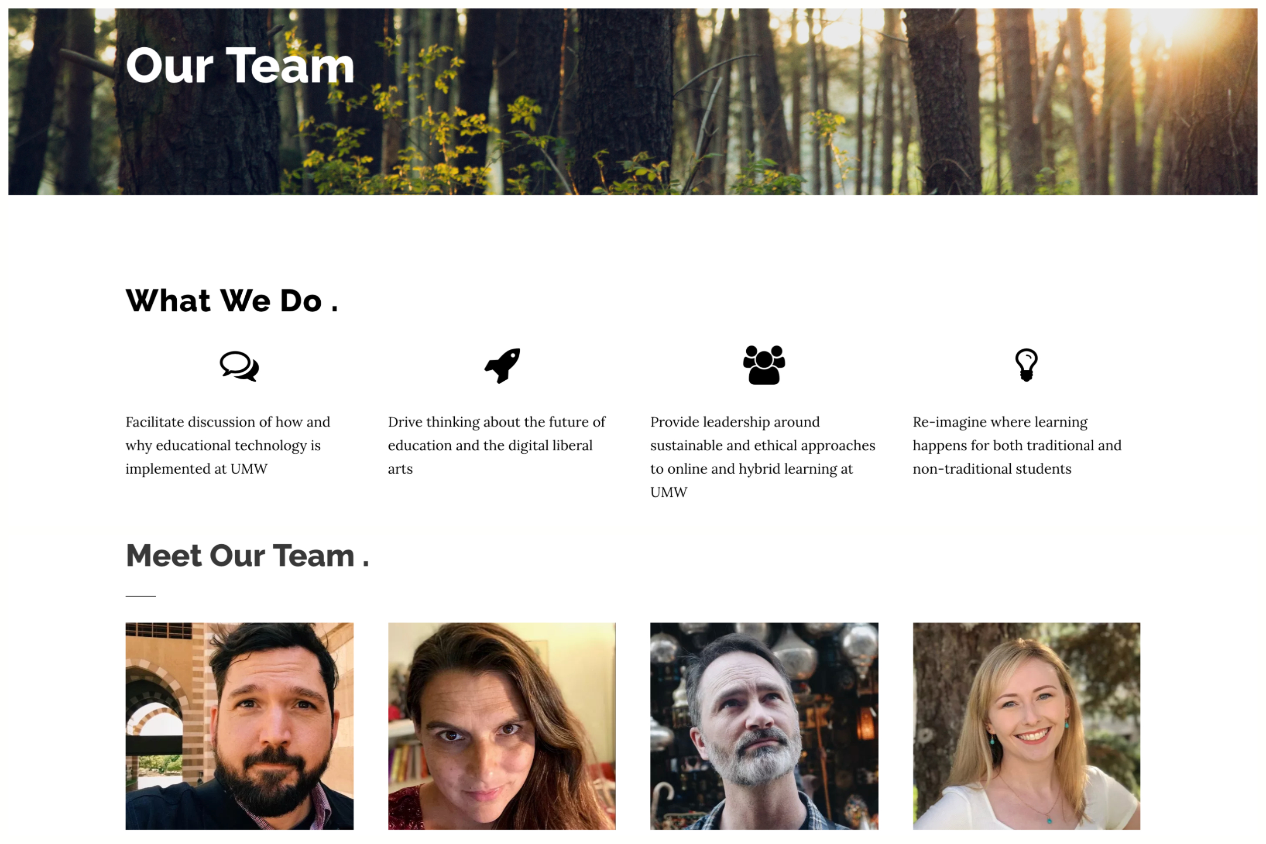 Our Team page on the DTLT website